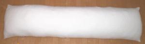 0227dakimakura03